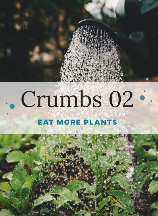 Crumbs 02: Eat more Plants