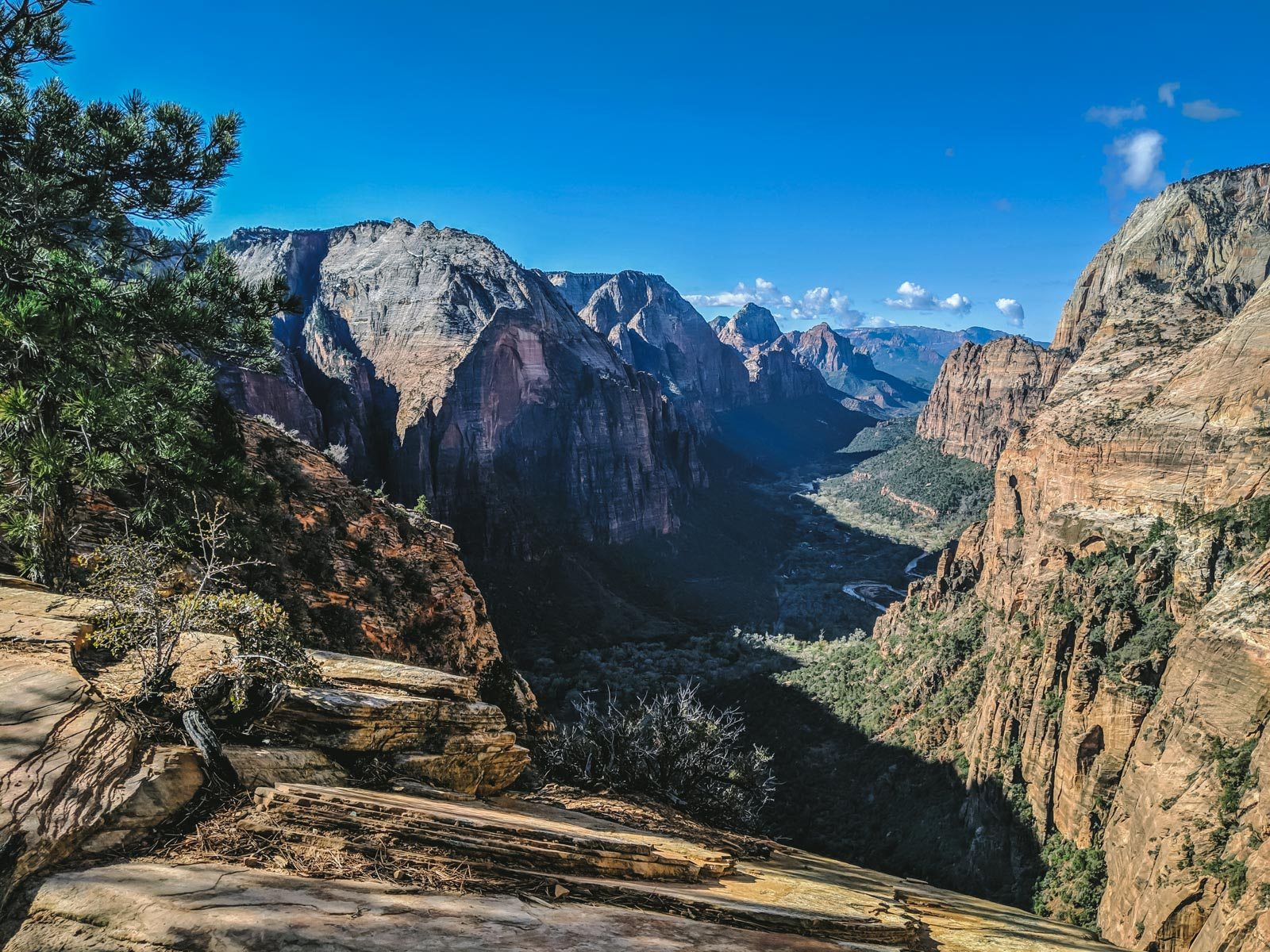 Angel's landing in Zion National Park | Go Messy or Go Hungry