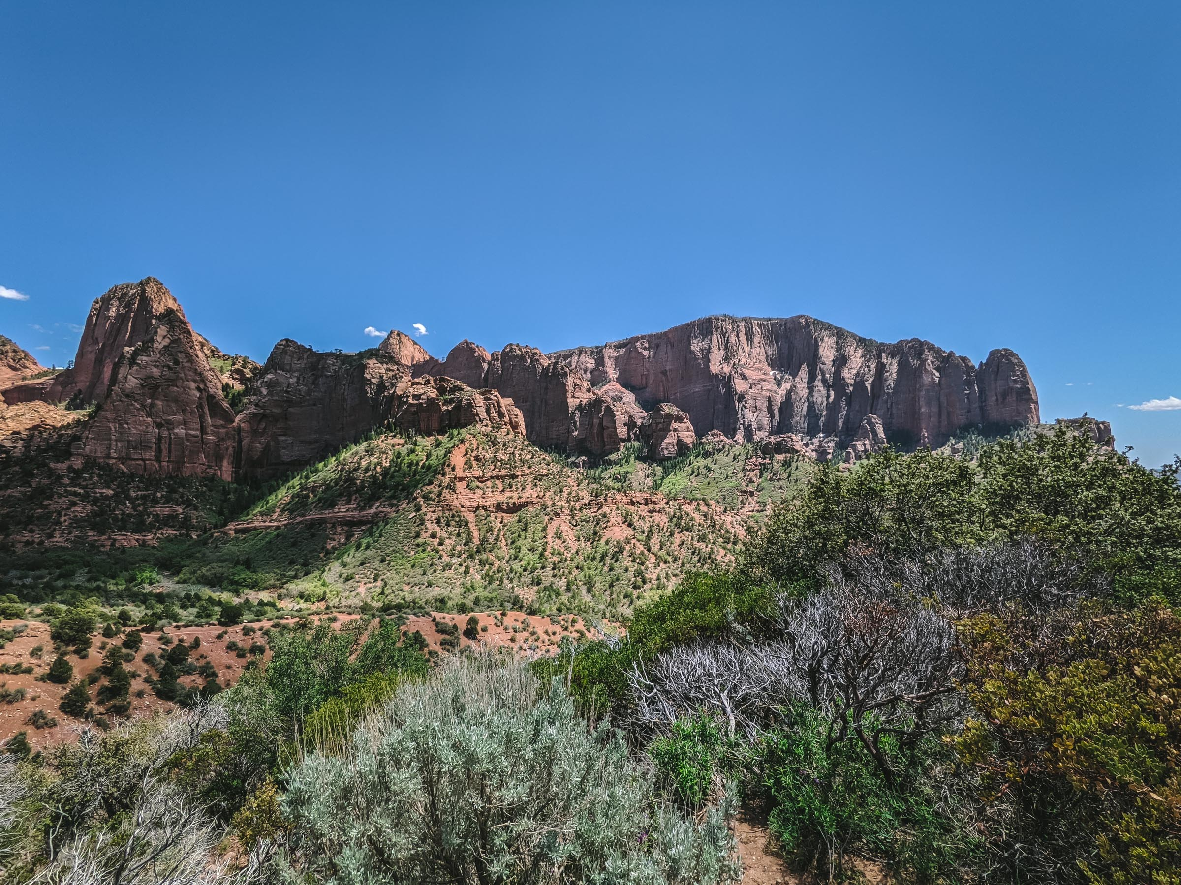 Kolob Canyons in Zion National Park | Go Messy or Go Hungry
